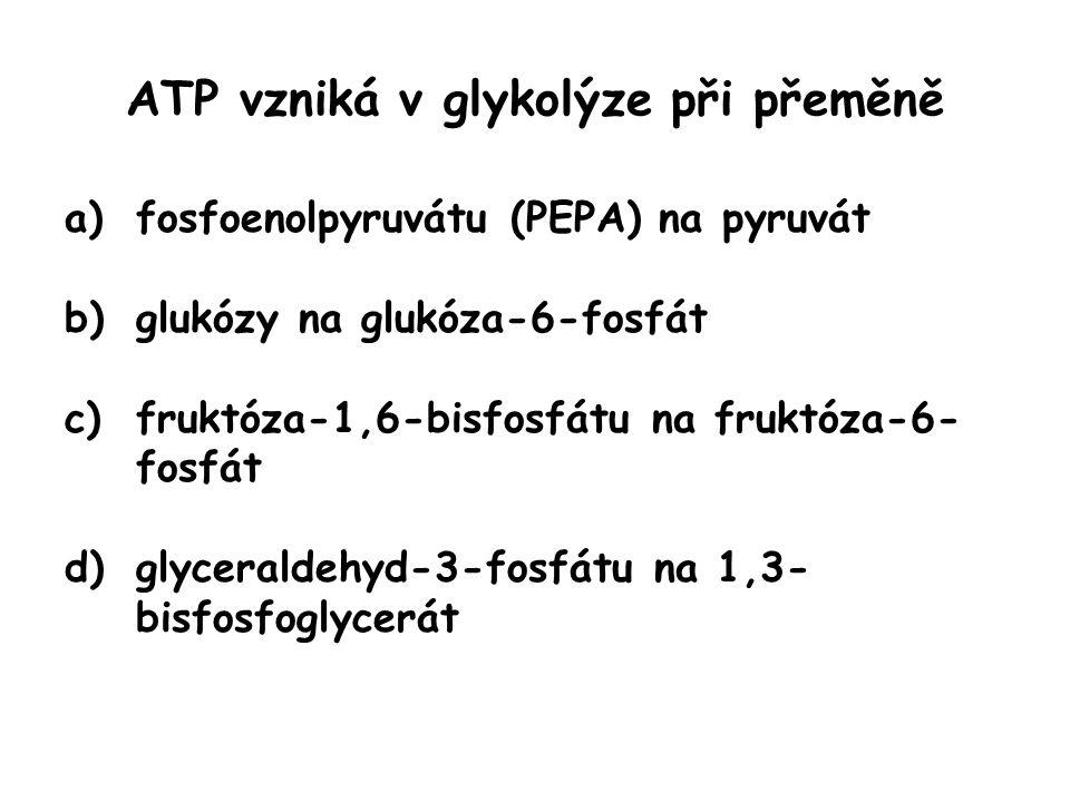 ATP vzniká v glykolýze při přeměně