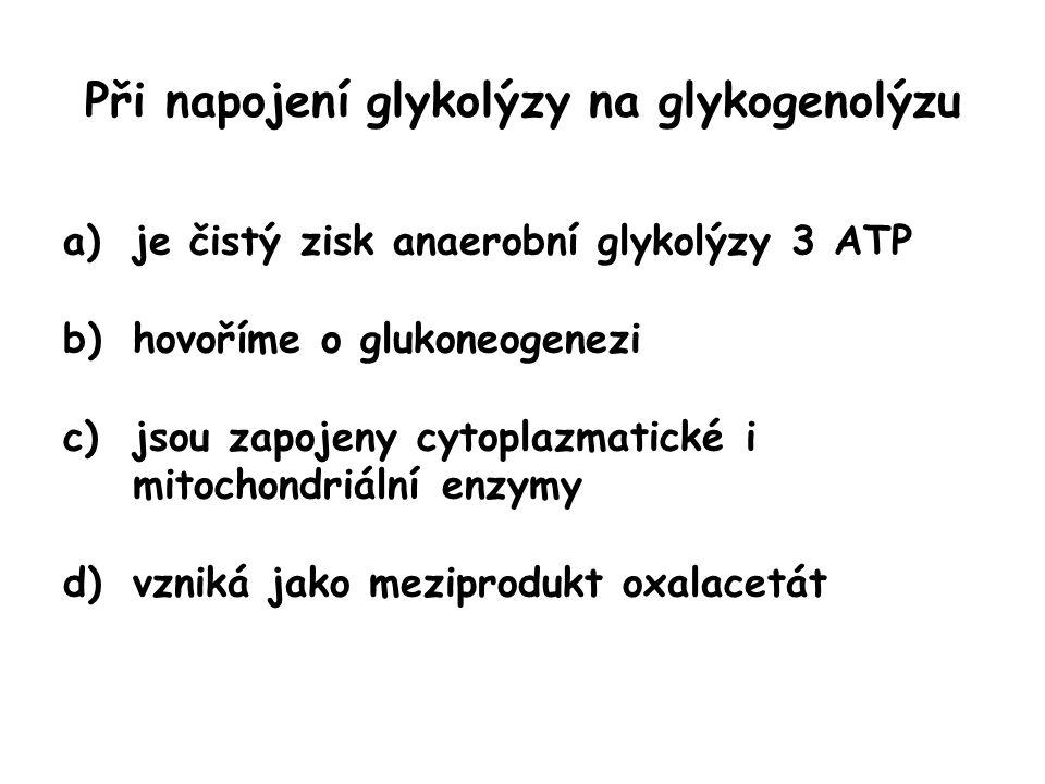 Při napojení glykolýzy na glykogenolýzu