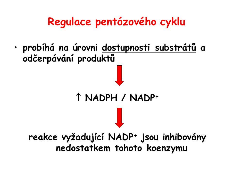Regulace pentózového cyklu