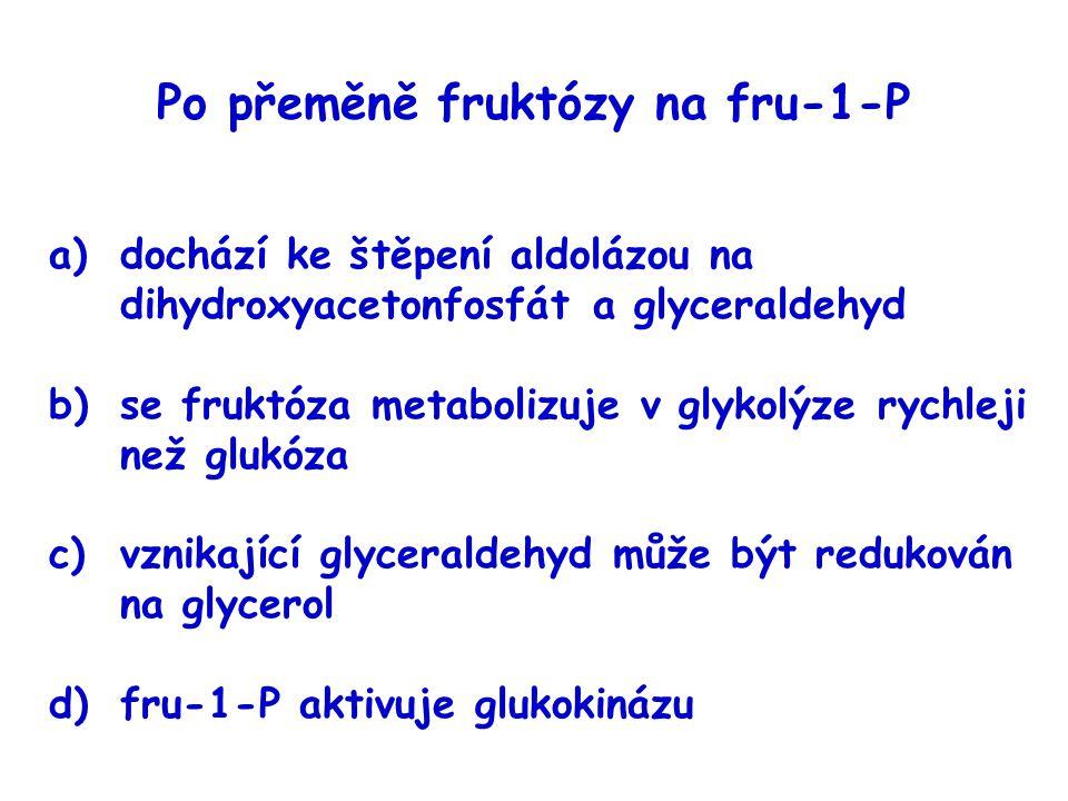 Po přeměně fruktózy na fru-1-P