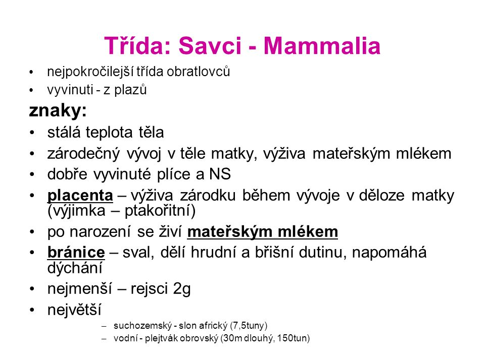 Třída: Savci - Mammalia