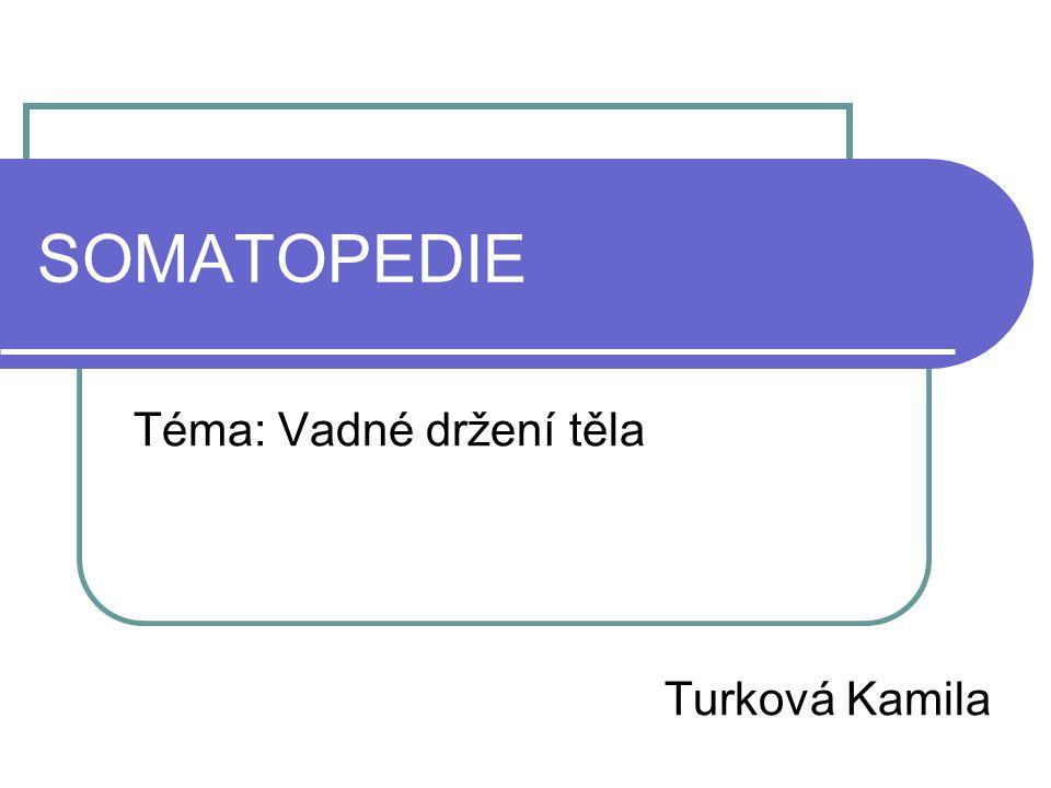 Téma: Vadné držení těla Turková Kamila