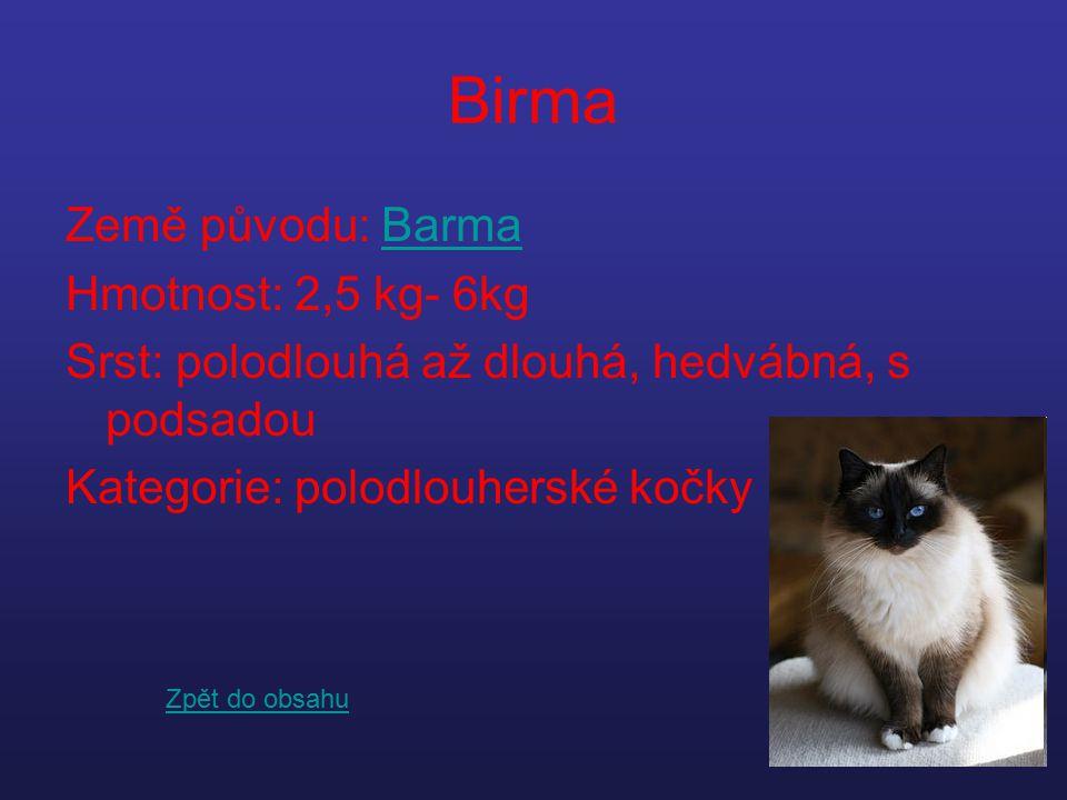 Birma Země původu: Barma Hmotnost: 2,5 kg- 6kg