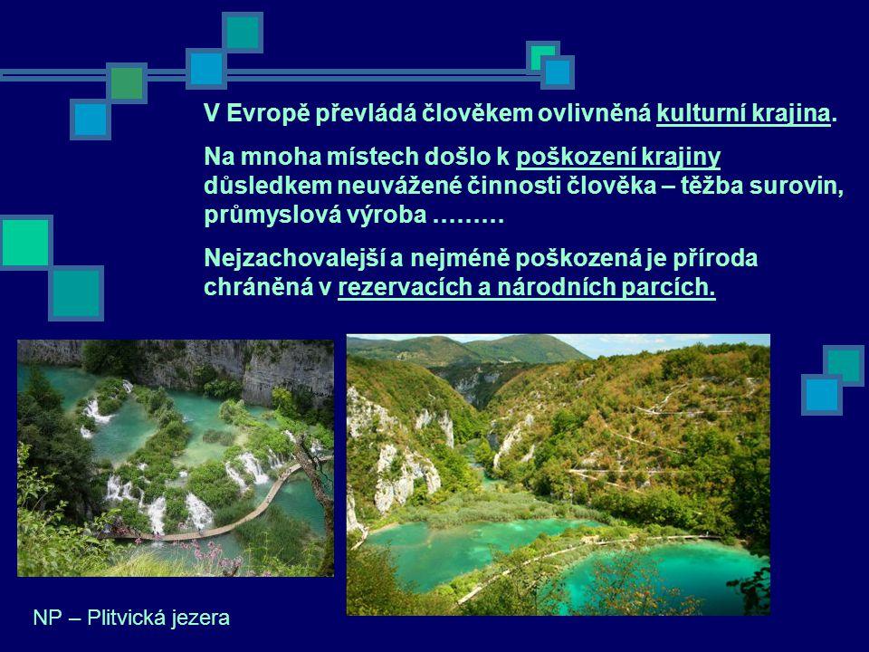 V Evropě převládá člověkem ovlivněná kulturní krajina.