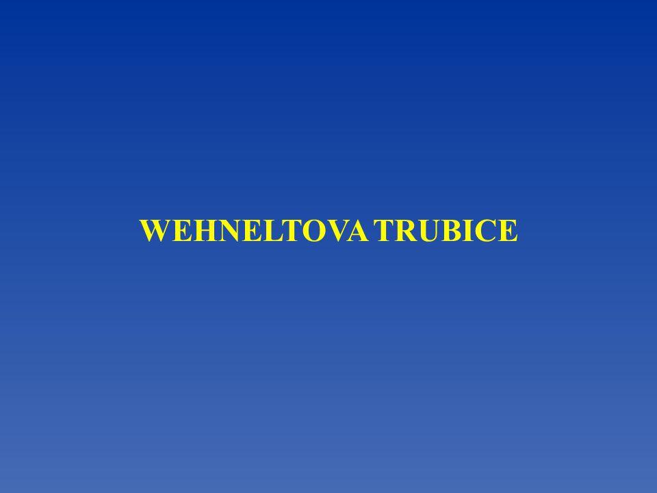 WEHNELTOVA TRUBICE