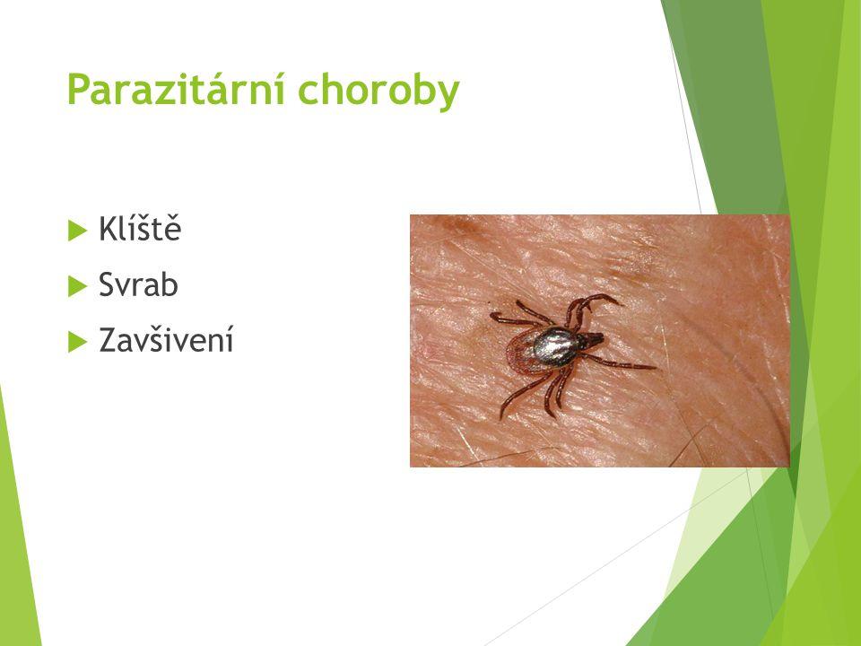 Parazitární choroby Klíště Svrab Zavšivení