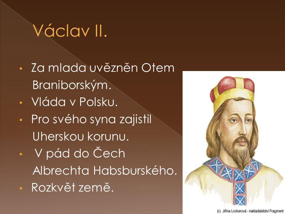 Václav II. Za mlada uvězněn Otem Braniborským. Vláda v Polsku.