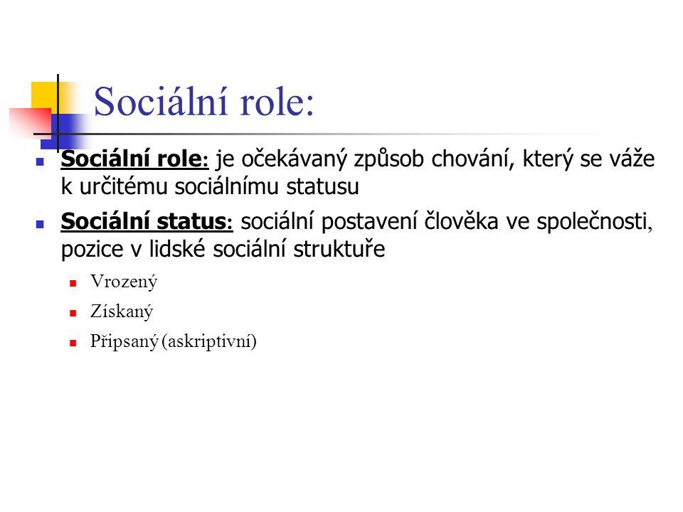 Sociální role: Sociální role: je očekávaný způsob chování, který se váže k určitému sociálnímu statusu.