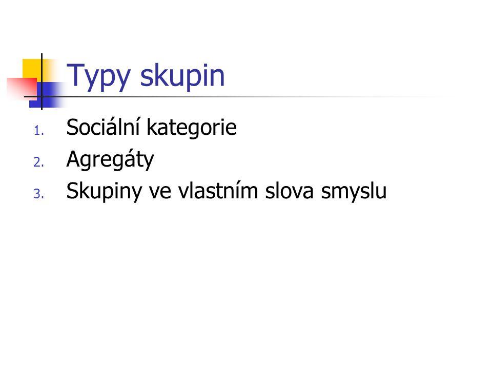 Typy skupin Sociální kategorie Agregáty