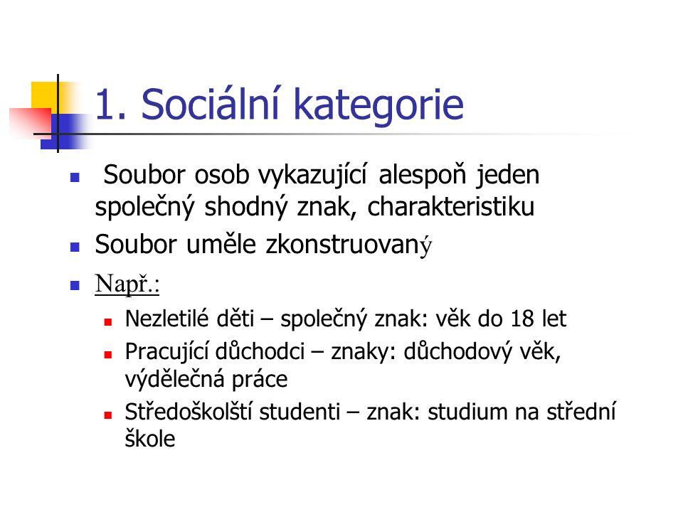 1. Sociální kategorie Soubor osob vykazující alespoň jeden společný shodný znak, charakteristiku. Soubor uměle zkonstruovaný.