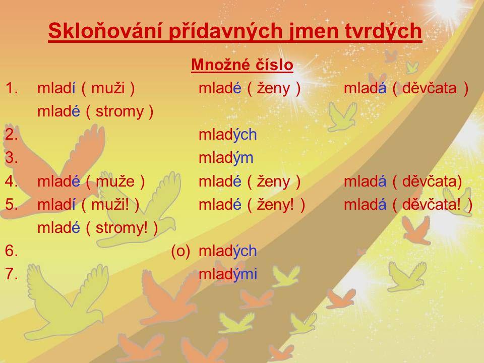 Skloňování přídavných jmen tvrdých