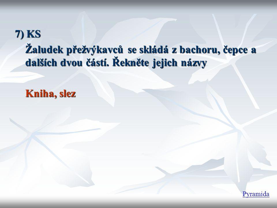 7) KS Žaludek přežvýkavců se skládá z bachoru, čepce a dalších dvou částí. Řekněte jejich názvy. Kniha, slez.