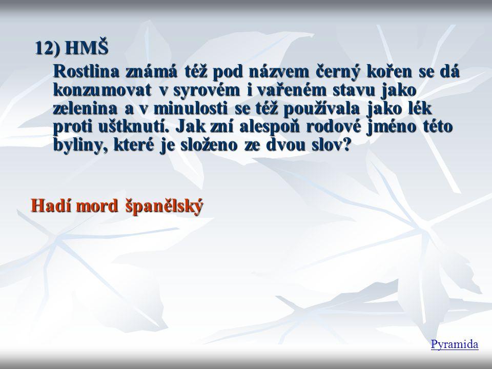 12) HMŠ