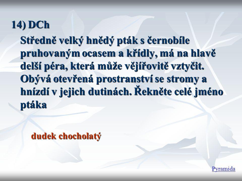 14) DCh