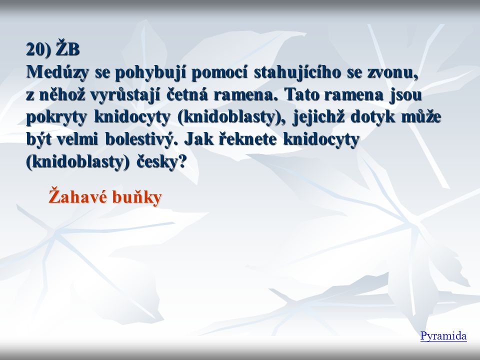 20) ŽB