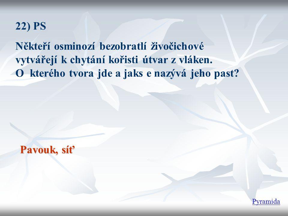 22) PS