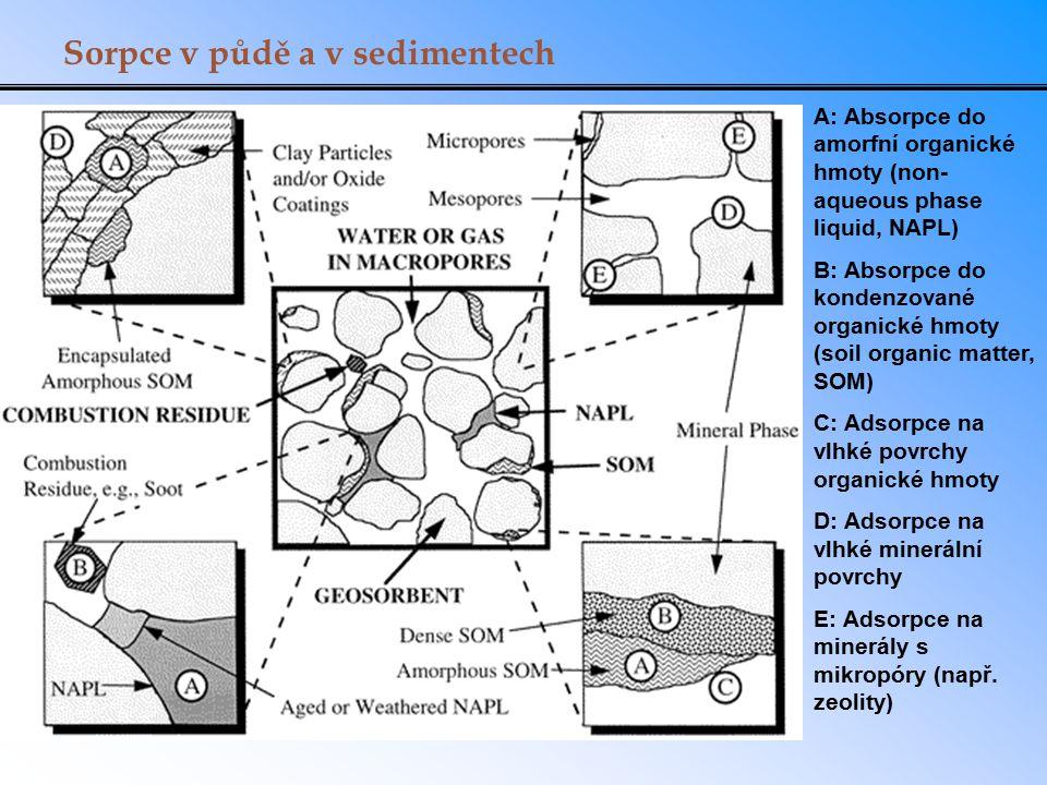 Sorpce v půdě a v sedimentech