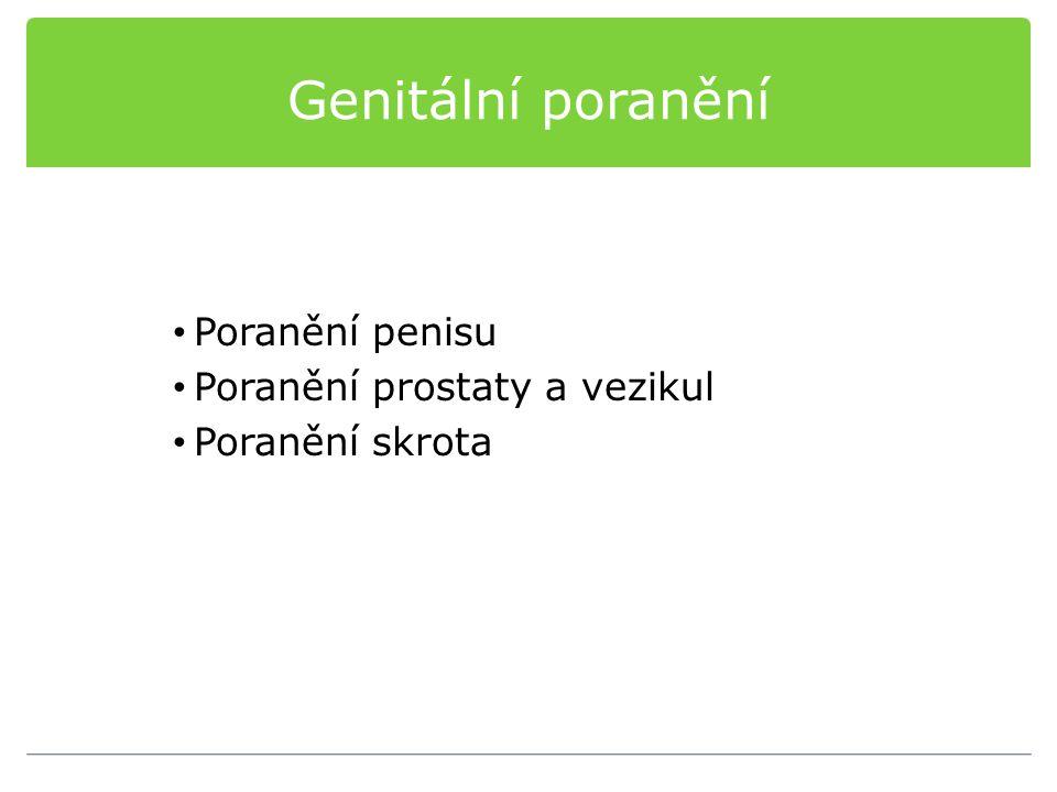 Genitální poranění Poranění penisu Poranění prostaty a vezikul