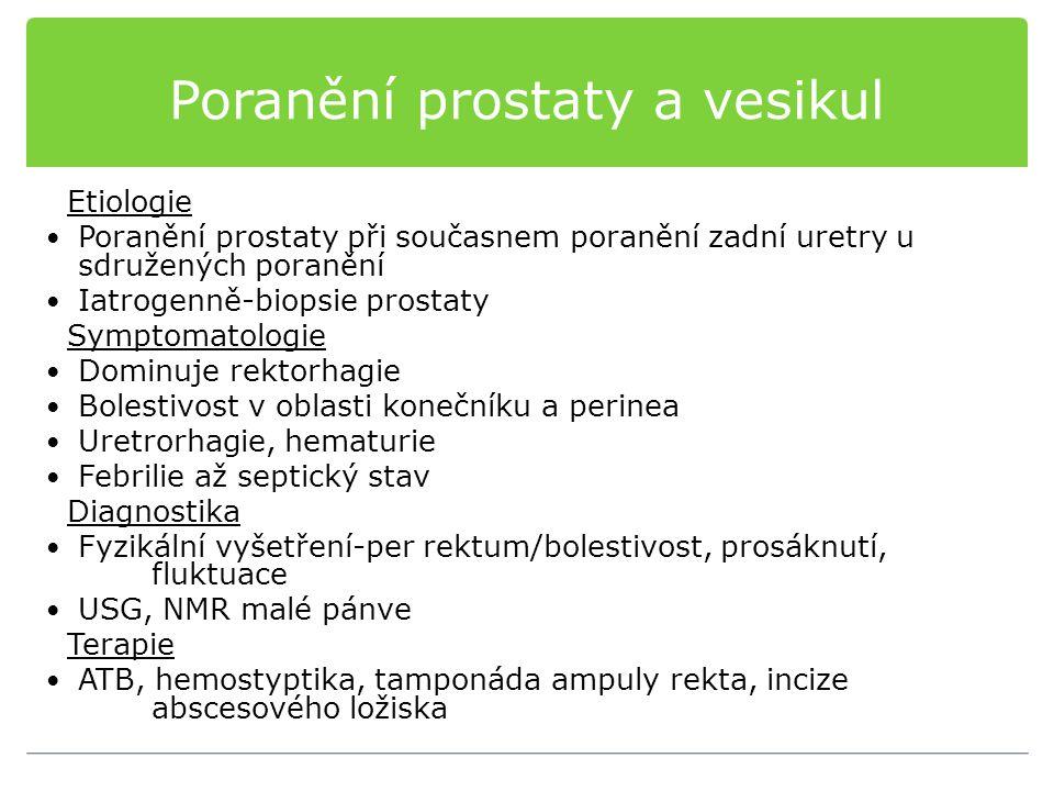 Poranění prostaty a vesikul