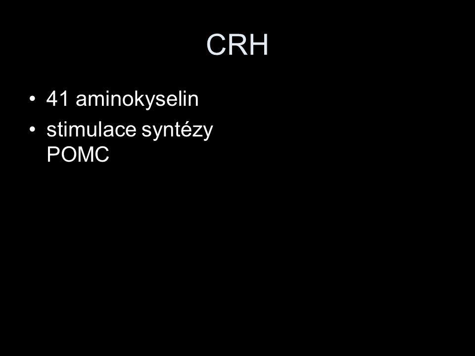 CRH 41 aminokyselin stimulace syntézy POMC