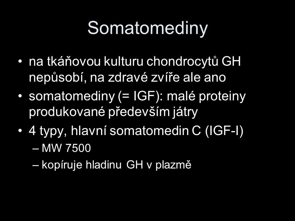 Somatomediny na tkáňovou kulturu chondrocytů GH nepůsobí, na zdravé zvíře ale ano. somatomediny (= IGF): malé proteiny produkované především játry.