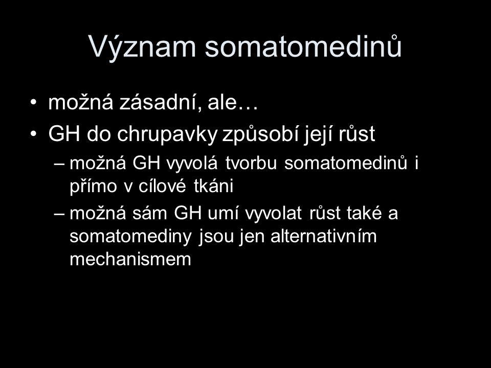Význam somatomedinů možná zásadní, ale…