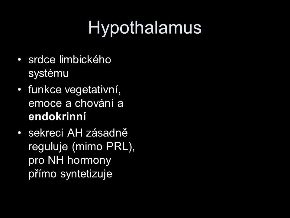 Hypothalamus srdce limbického systému