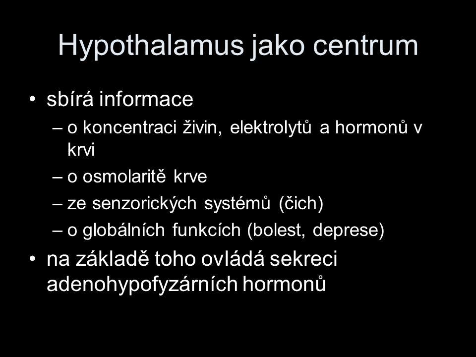 Hypothalamus jako centrum