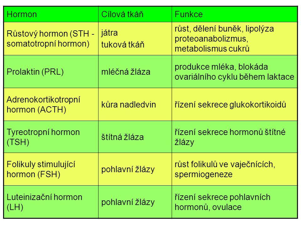 Hormon Cílová tkáň. Funkce. Růstový hormon (STH - somatotropní hormon) játra. tuková tkáň.