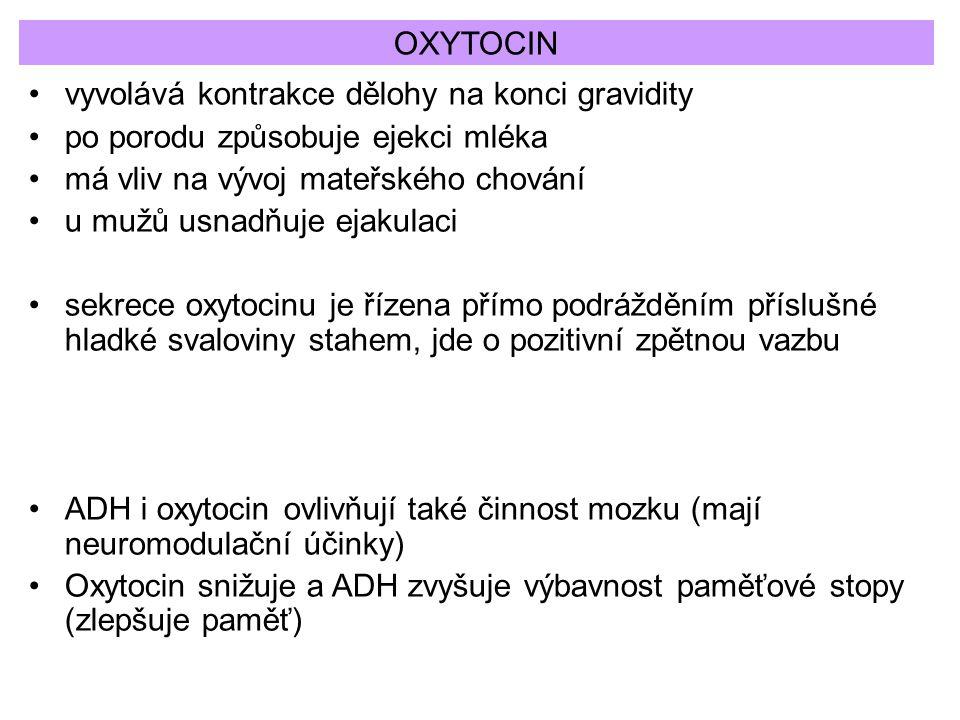 OXYTOCIN vyvolává kontrakce dělohy na konci gravidity. po porodu způsobuje ejekci mléka. má vliv na vývoj mateřského chování.