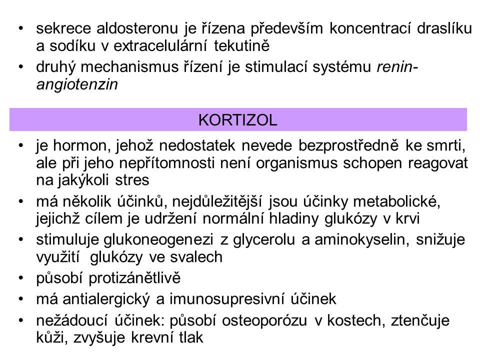 sekrece aldosteronu je řízena především koncentrací draslíku a sodíku v extracelulární tekutině