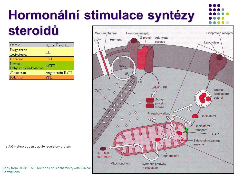 Hormonální stimulace syntézy steroidů