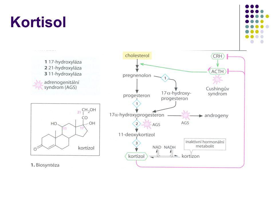 Kortisol