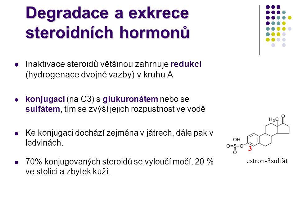 Degradace a exkrece steroidních hormonů
