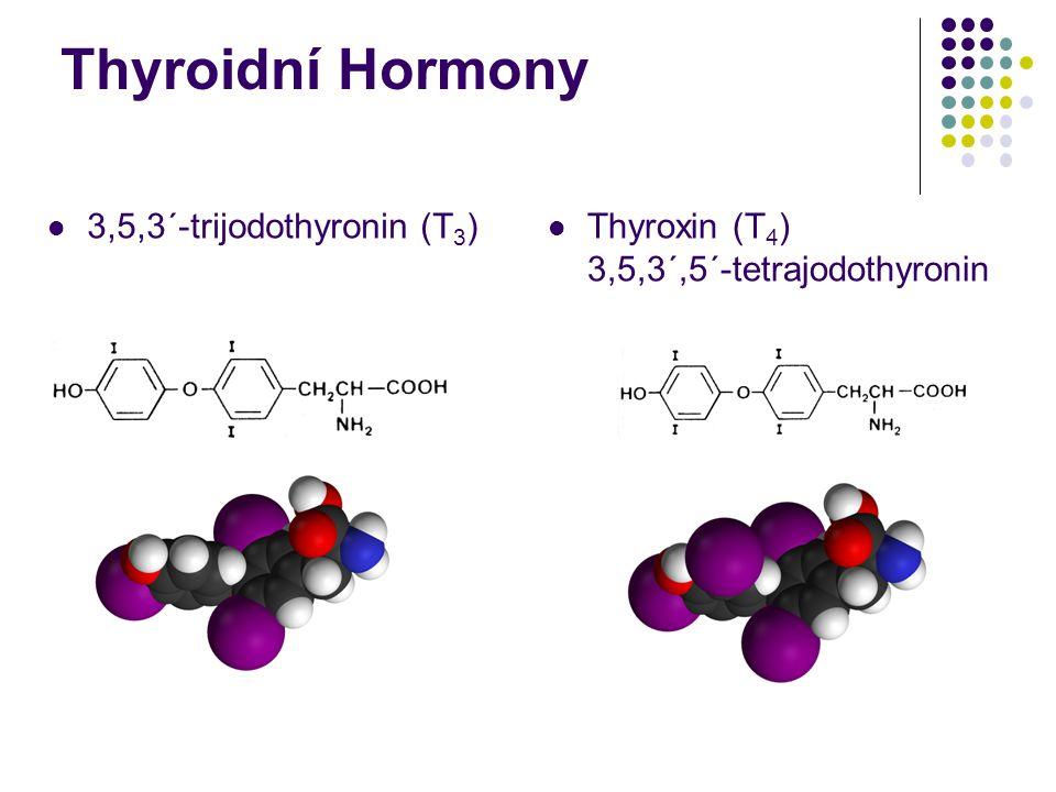 Thyroidní Hormony 3,5,3´-trijodothyronin (T3)