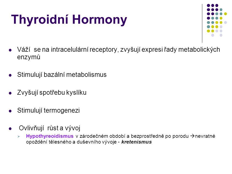 Thyroidní Hormony Váží se na intracelulární receptory, zvyšují expresi řady metabolických enzymů. Stimulují bazální metabolismus.