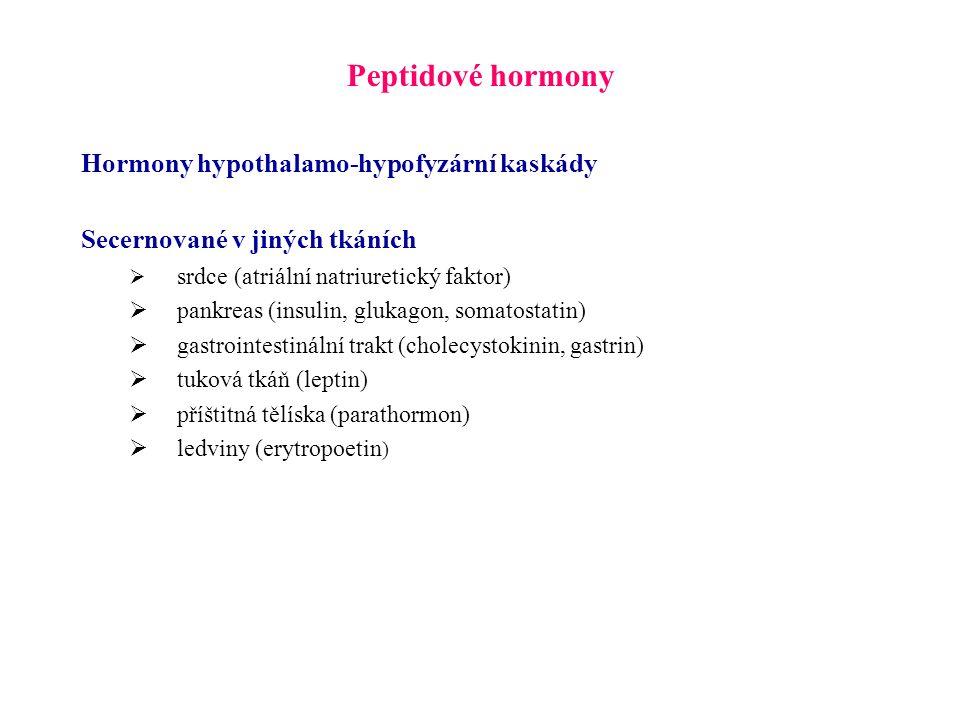 Peptidové hormony Hormony hypothalamo-hypofyzární kaskády