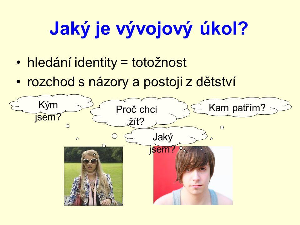 Jaký je vývojový úkol hledání identity = totožnost
