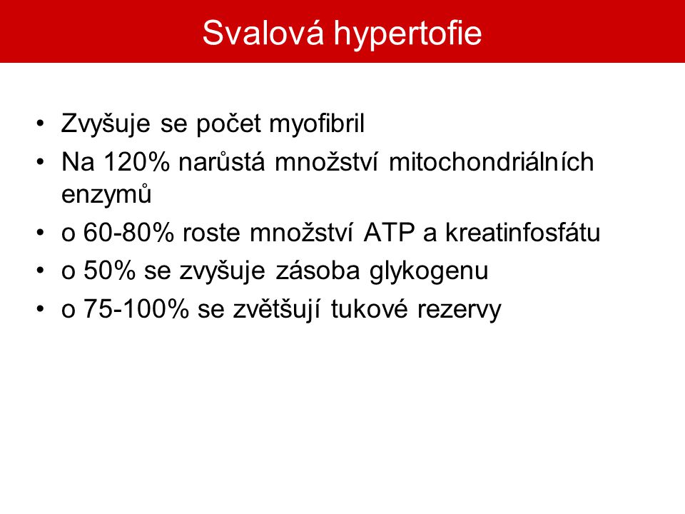 Svalová hypertofie Zvyšuje se počet myofibril
