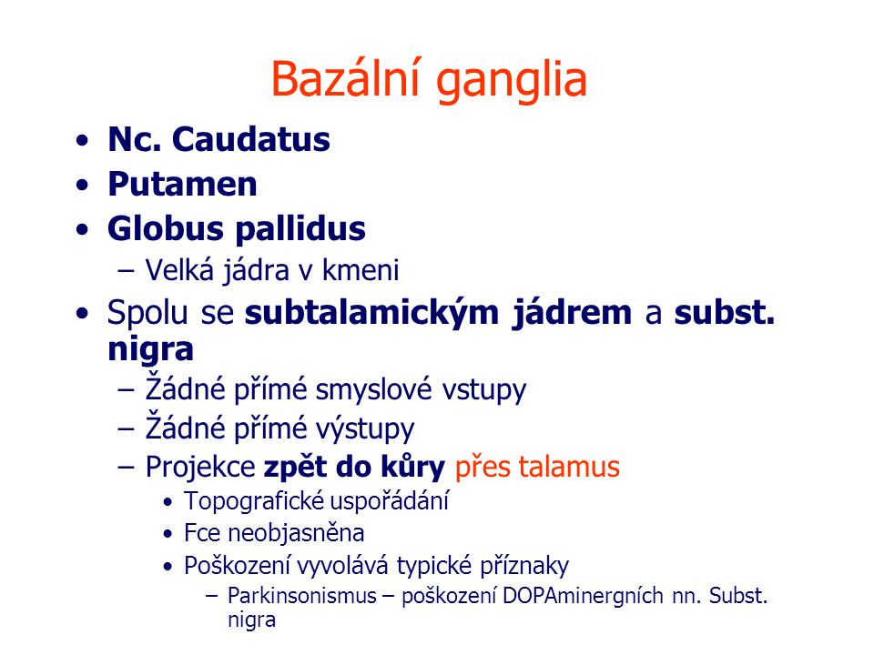 Bazální ganglia Nc. Caudatus Putamen Globus pallidus