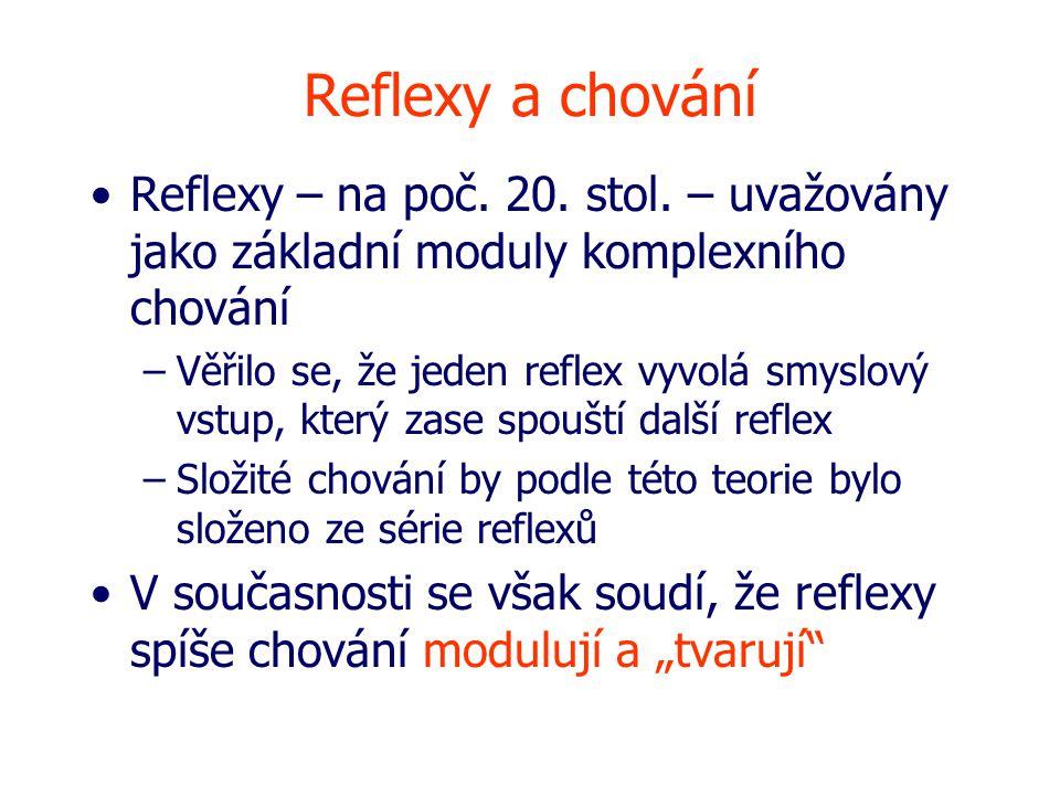 Reflexy a chování Reflexy – na poč. 20. stol. – uvažovány jako základní moduly komplexního chování.