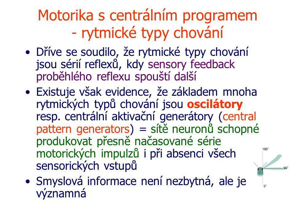 Motorika s centrálním programem - rytmické typy chování