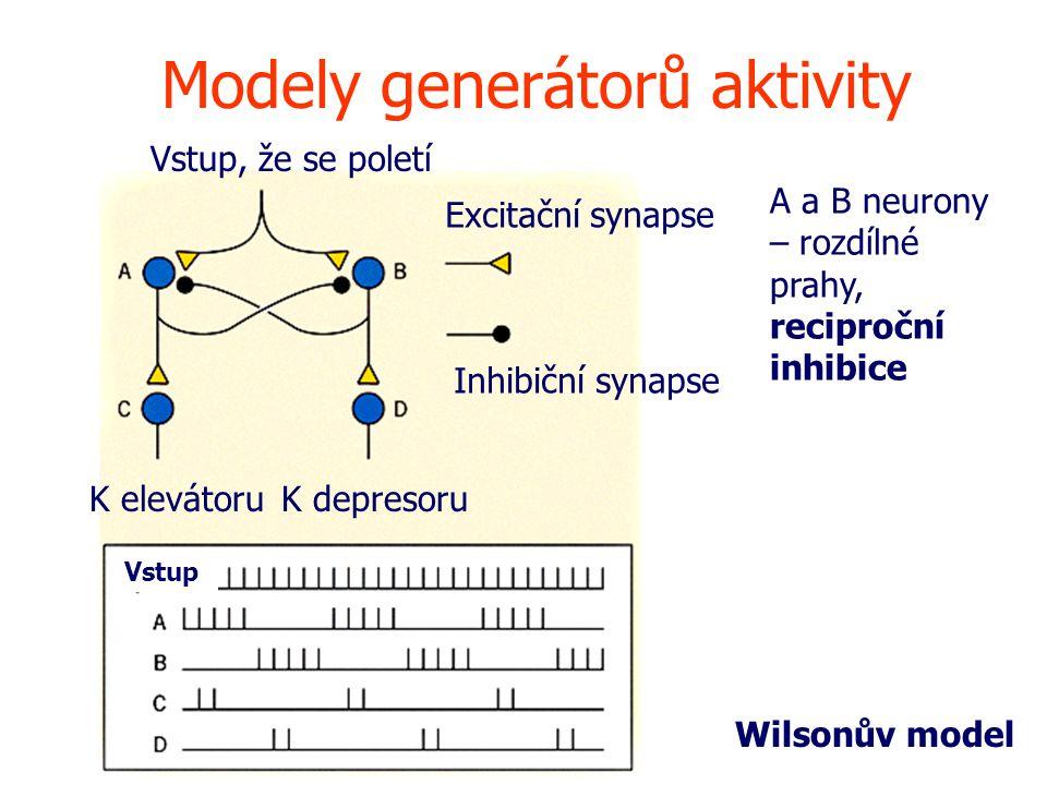 Modely generátorů aktivity