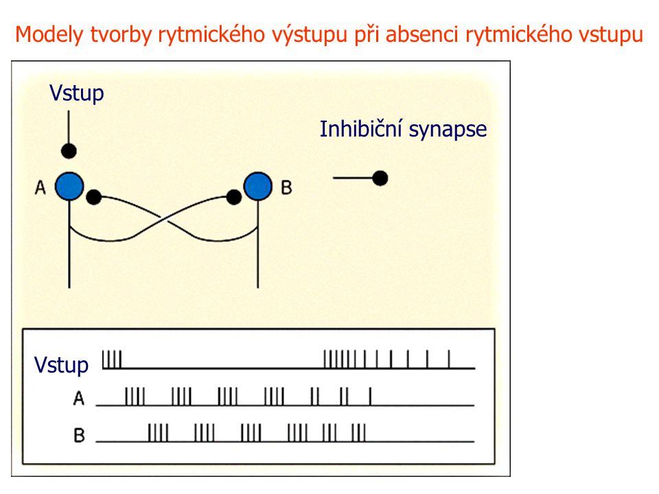 Modely tvorby rytmického výstupu při absenci rytmického vstupu