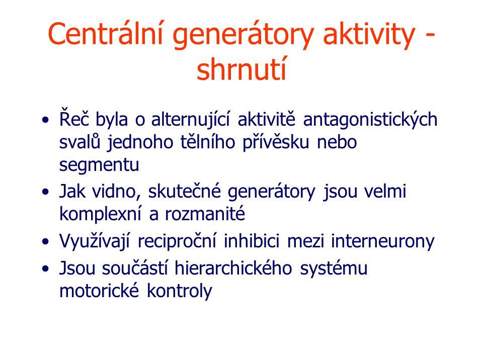 Centrální generátory aktivity - shrnutí