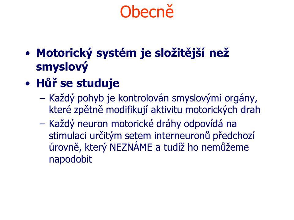 Obecně Motorický systém je složitější než smyslový Hůř se studuje