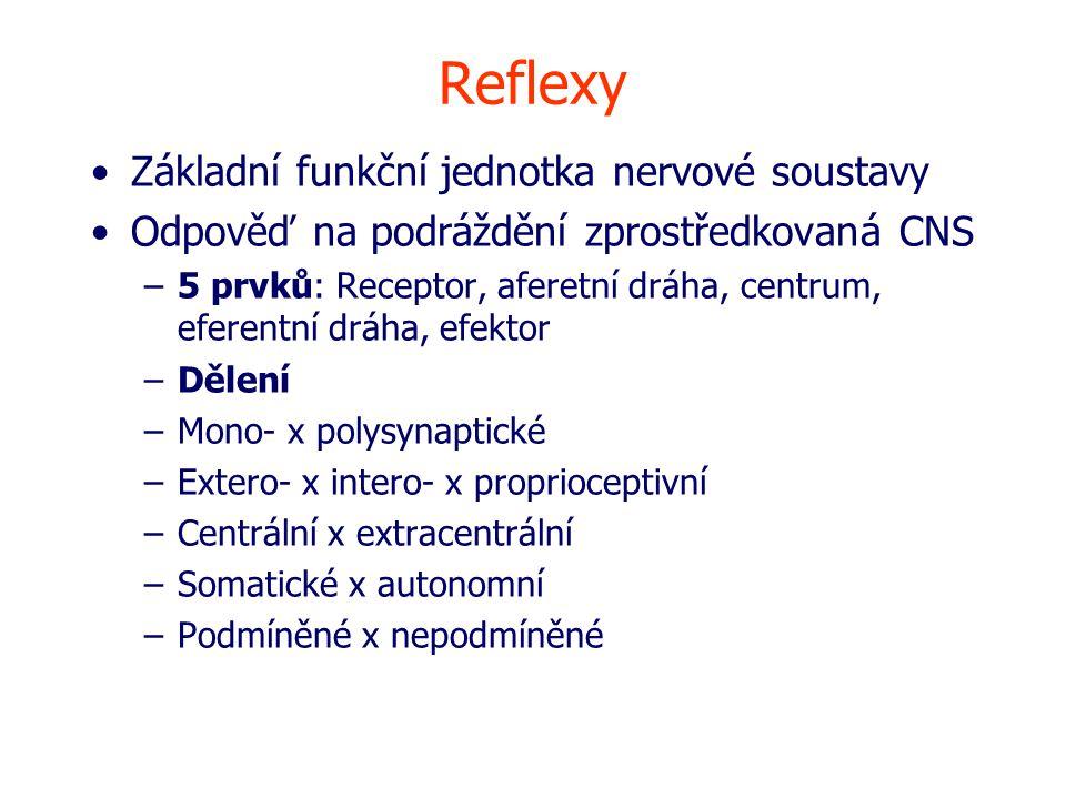 Reflexy Základní funkční jednotka nervové soustavy