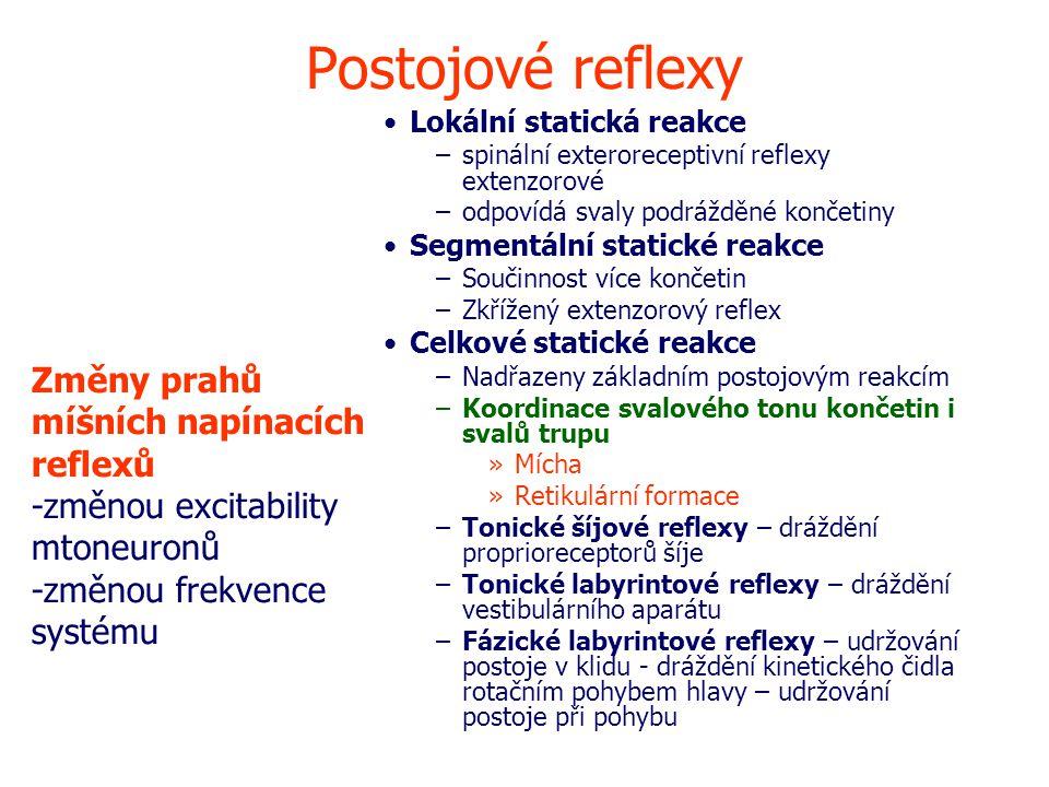 Postojové reflexy Změny prahů míšních napínacích reflexů