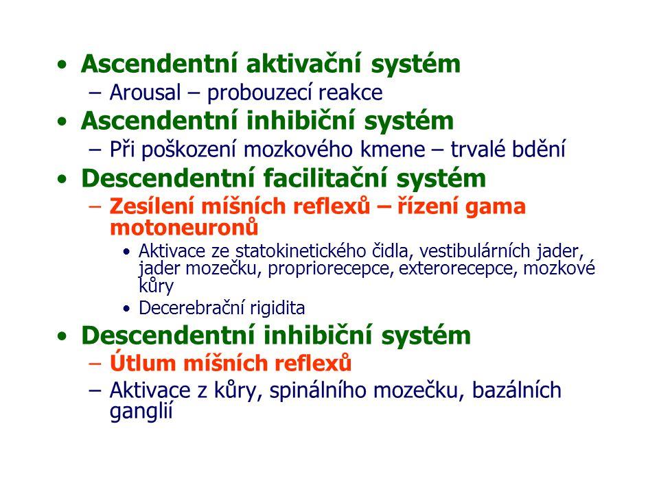 Ascendentní aktivační systém Ascendentní inhibiční systém