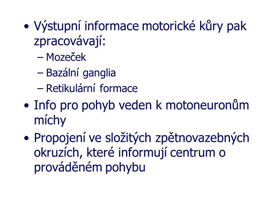 Výstupní informace motorické kůry pak zpracovávají: